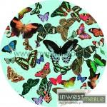 Tipla_Butterfly_3_rz.jpg